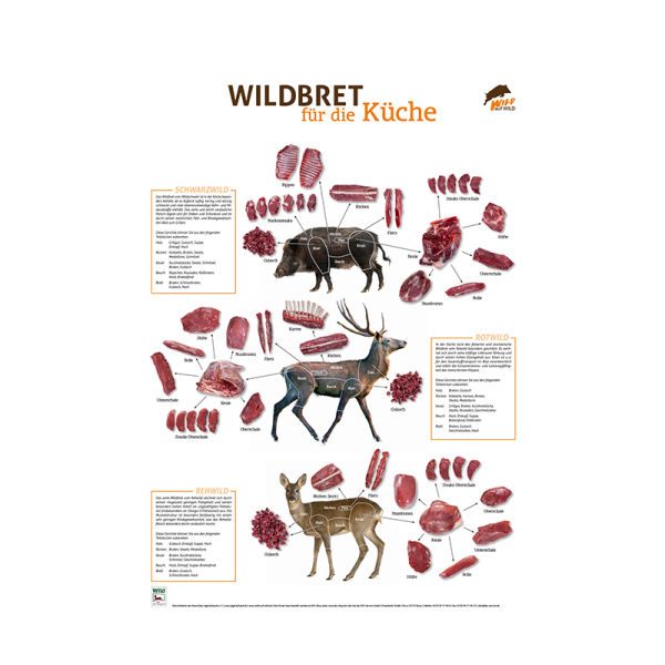 Wildbret-Poster Hoch- und Rehwild   LJV Jagd-Service