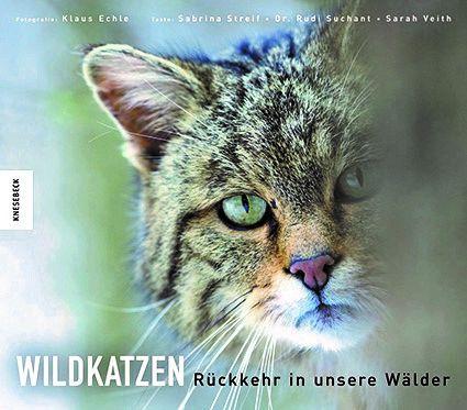 Wildkatzen