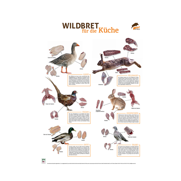 poster wildbret f r die k che niederwild ljv jagd service. Black Bedroom Furniture Sets. Home Design Ideas