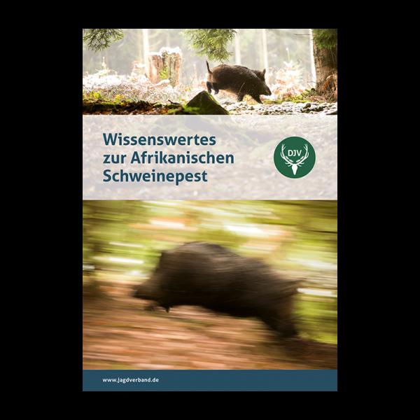 Wissenswertes zur Afrikanischen Schweinepest